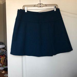 Brand new never worn j crew skirt